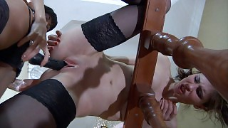 Doll-faced girl gets to a strap-on fucking session with her next-door babe videos